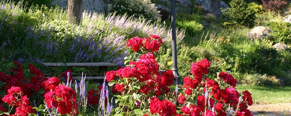 Jardin Florale